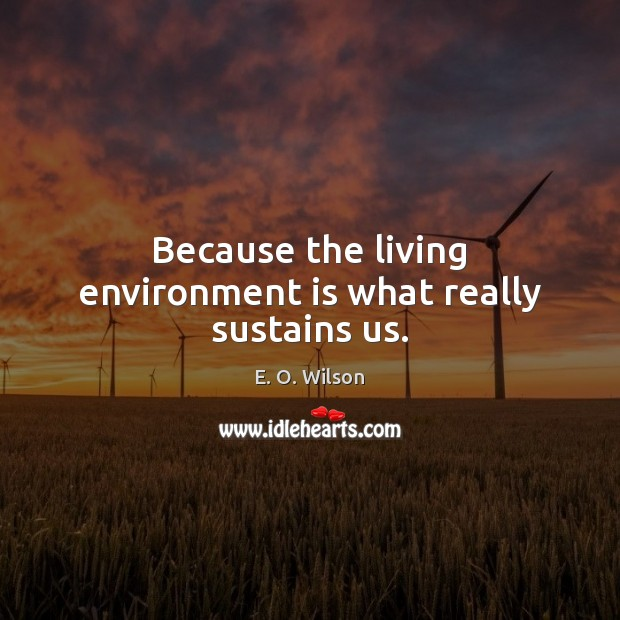 Because the living environment is what really sustains us. E. O. Wilson Picture Quote