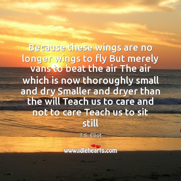 Image, Because these wings are no longer wings to fly But merely vans