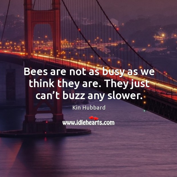 Bees are not as busy as we think they are. They just can't buzz any slower. Image