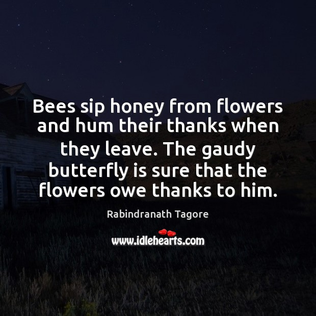 Image, Bees sip honey from flowers and hum their thanks when they leave.