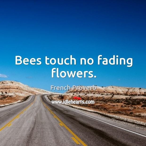 Bees touch no fading flowers. French Proverbs Image