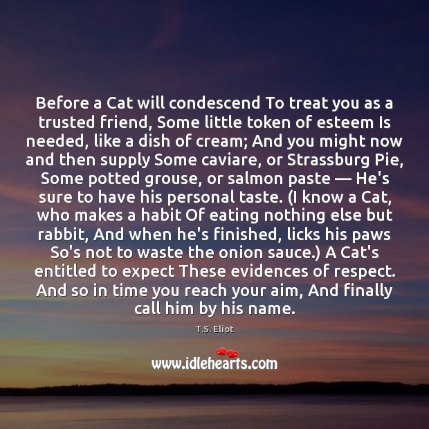 Before a Cat will condescend To treat you as a trusted friend, T.S. Eliot Picture Quote