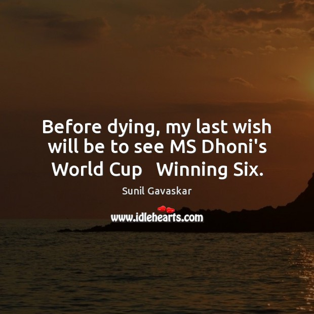 Before dying, my last wish will be to see MS Dhoni's World Cup   Winning Six. Image