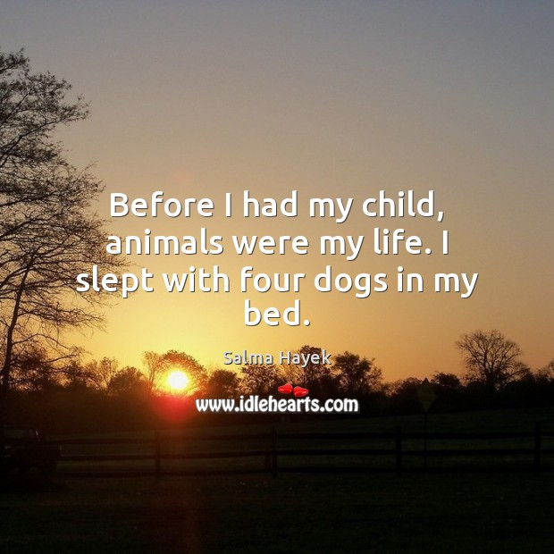 Before I had my child, animals were my life. I slept with four dogs in my bed. Salma Hayek Picture Quote