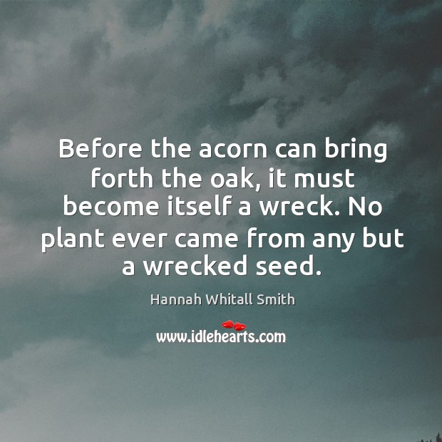 Before the acorn can bring forth the oak, it must become itself Image