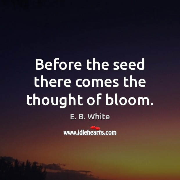 Before the seed there comes the thought of bloom. Image