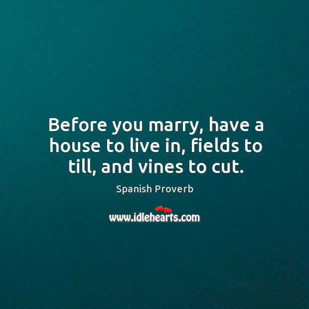 Before you marry, have a house to live in, fields to till, and vines to cut. Spanish Proverbs Image