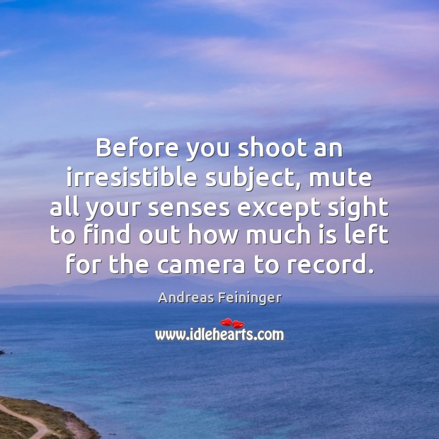 Before you shoot an irresistible subject, mute all your senses except sight Andreas Feininger Picture Quote