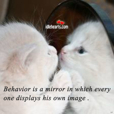 Behavior Is A Mirror In Which Every One….