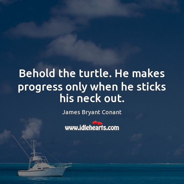 Image, Behold the turtle. He makes progress only when he sticks his neck out.