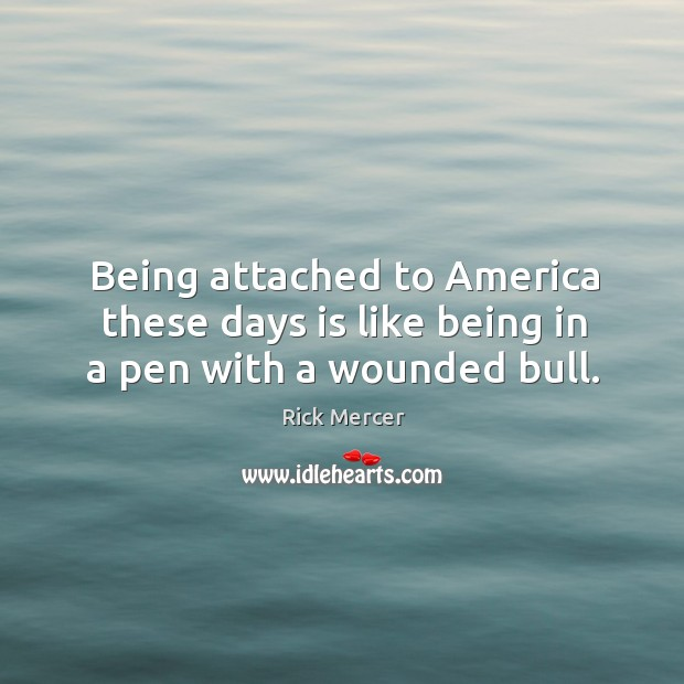 Being attached to america these days is like being in a pen with a wounded bull. Image