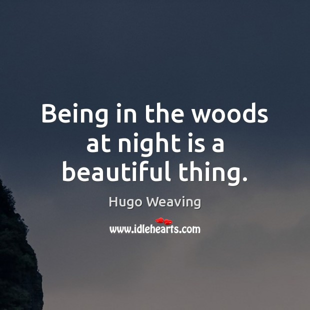 Being in the woods at night is a beautiful thing. Hugo Weaving Picture Quote