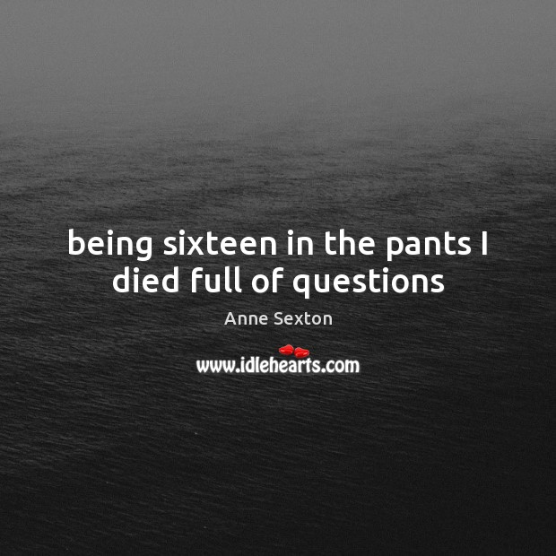 Being sixteen in the pants I died full of questions Anne Sexton Picture Quote