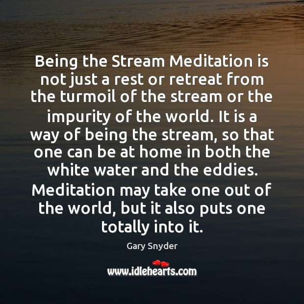 Image, Being the Stream Meditation is not just a rest or retreat from