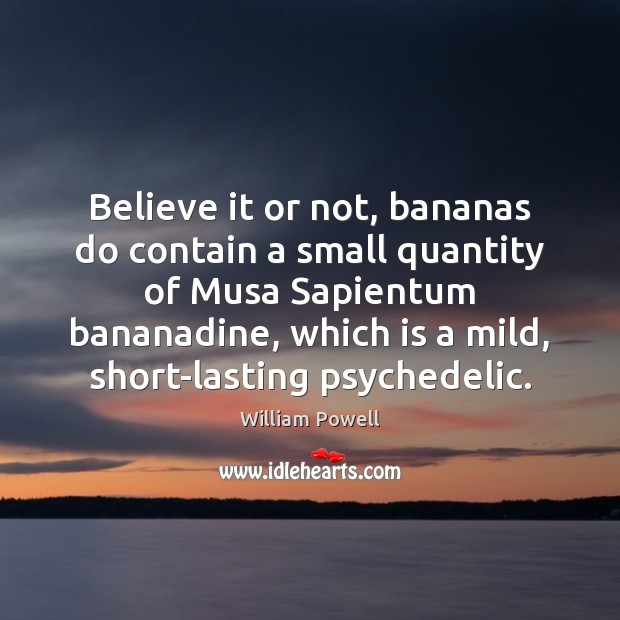 Believe it or not, bananas do contain a small quantity of Musa William Powell Picture Quote