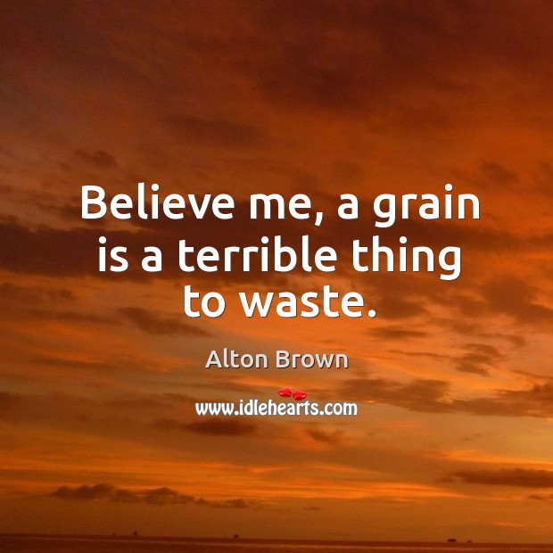 Believe me, a grain is a terrible thing to waste. Alton Brown Picture Quote