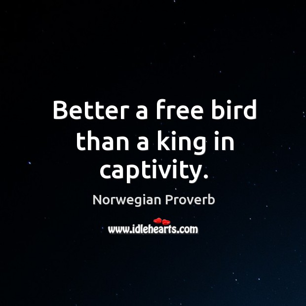Better a free bird than a king in captivity. Norwegian Proverbs Image