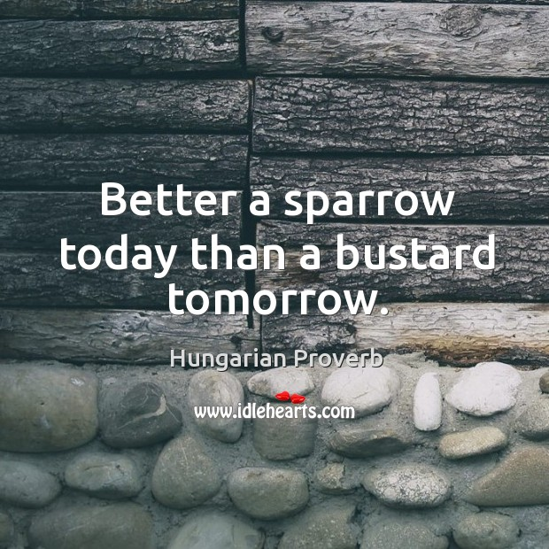 Image, Better a sparrow today than a bustard tomorrow.