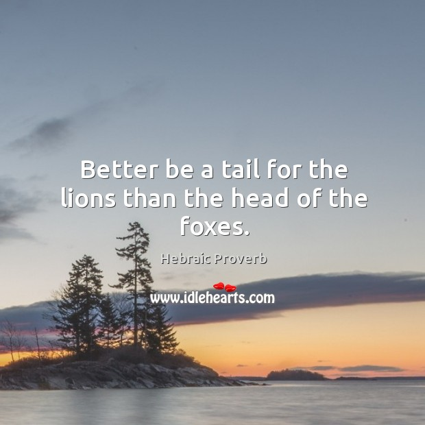 Image, Better be a tail for the lions than the head of the foxes.