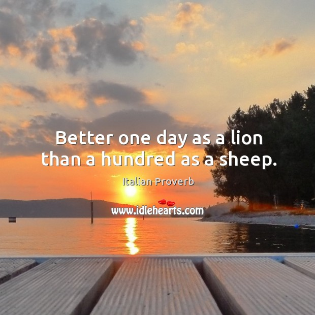 Image, Better one day as a lion than a hundred as a sheep.