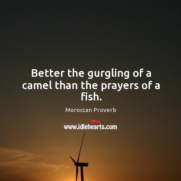 Better the gurgling of a camel than the prayers of a fish. Moroccan Proverbs Image