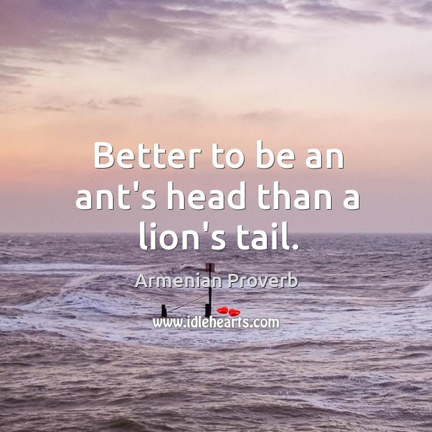 Better to be an ant's head than a lion's tail. Armenian Proverbs Image