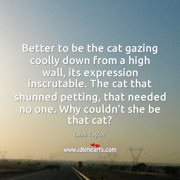 Better to be the cat gazing coolly down from a high wall, Laini Taylor Picture Quote