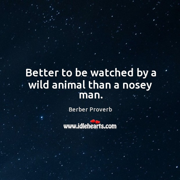 Better to be watched by a wild animal than a nosey man. Berber Proverbs Image