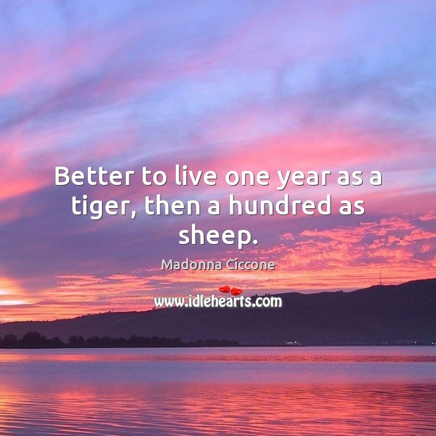 Image, Better to live one year as a tiger, then a hundred as sheep.