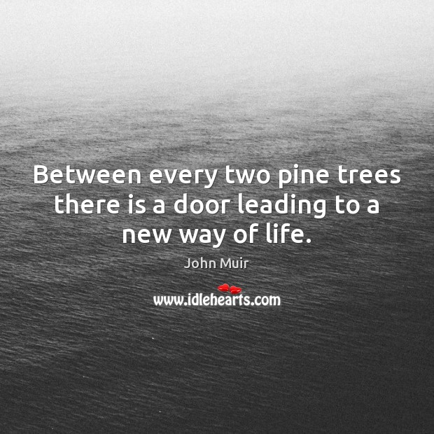 Image, Between every two pine trees there is a door leading to a new way of life.