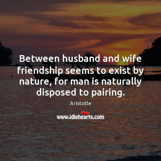 Image, Between husband and wife friendship seems to exist by nature, for man