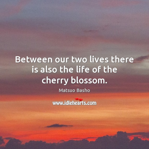 Between our two lives there is also the life of the cherry blossom. Matsuo Basho Picture Quote