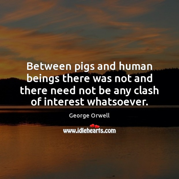 Between pigs and human beings there was not and there need not George Orwell Picture Quote