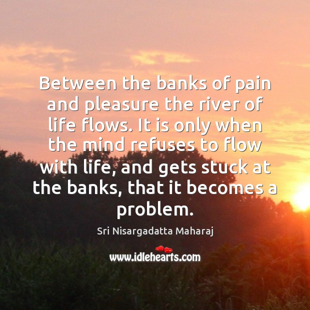 Between the banks of pain and pleasure the river of life flows. Sri Nisargadatta Maharaj Picture Quote