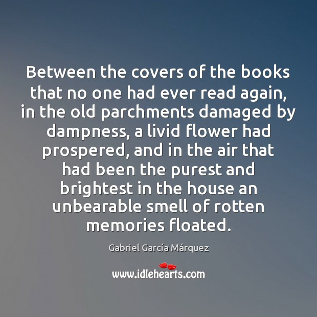 Between the covers of the books that no one had ever read Gabriel García Márquez Picture Quote