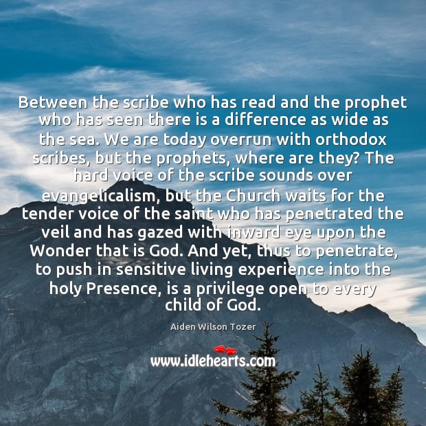 Image, Between the scribe who has read and the prophet who has seen