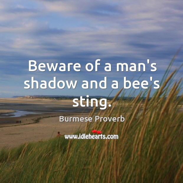 Beware of a man's shadow and a bee's sting. Burmese Proverbs Image