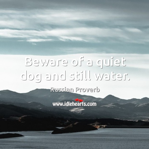 Beware of a quiet dog and still water. Image