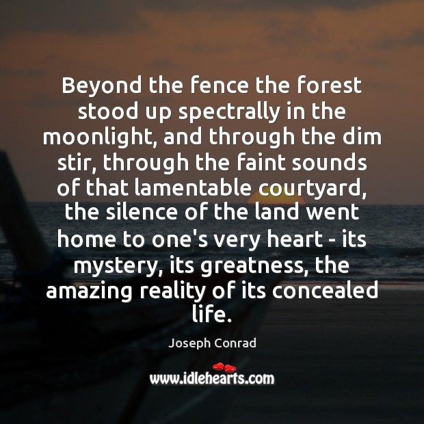 Image, Beyond the fence the forest stood up spectrally in the moonlight, and