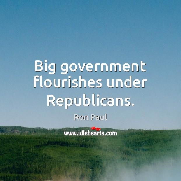 Big government flourishes under Republicans. Ron Paul Picture Quote