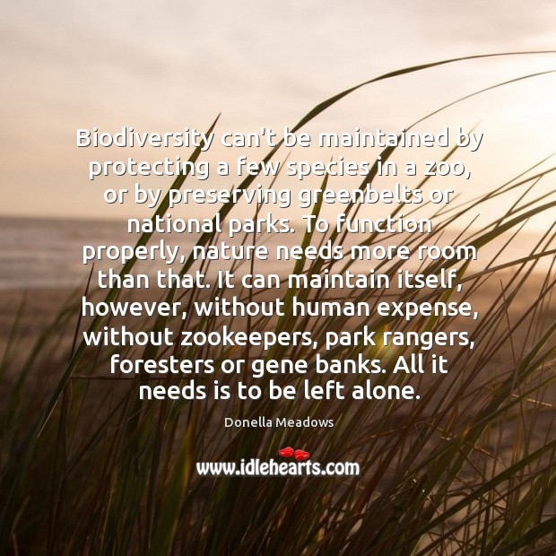 Biodiversity can't be maintained by protecting a few species in a zoo, Donella Meadows Picture Quote