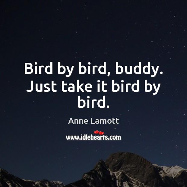 Bird by bird, buddy. Just take it bird by bird. Anne Lamott Picture Quote