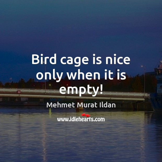 Bird cage is nice only when it is empty! Image