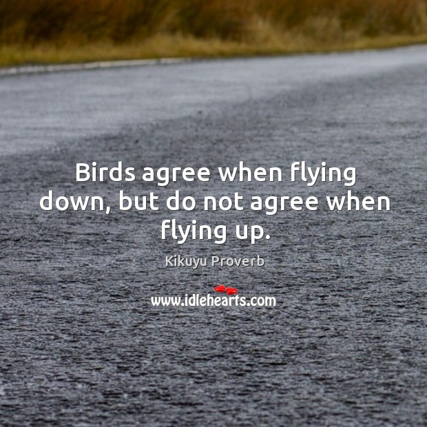 Birds agree when flying down, but do not agree when flying up. Kikuyu Proverbs Image