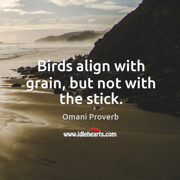 Birds align with grain, but not with the stick. Omani Proverbs Image