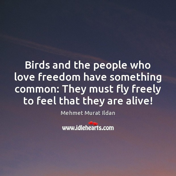 Image, Birds and the people who love freedom have something common: They must