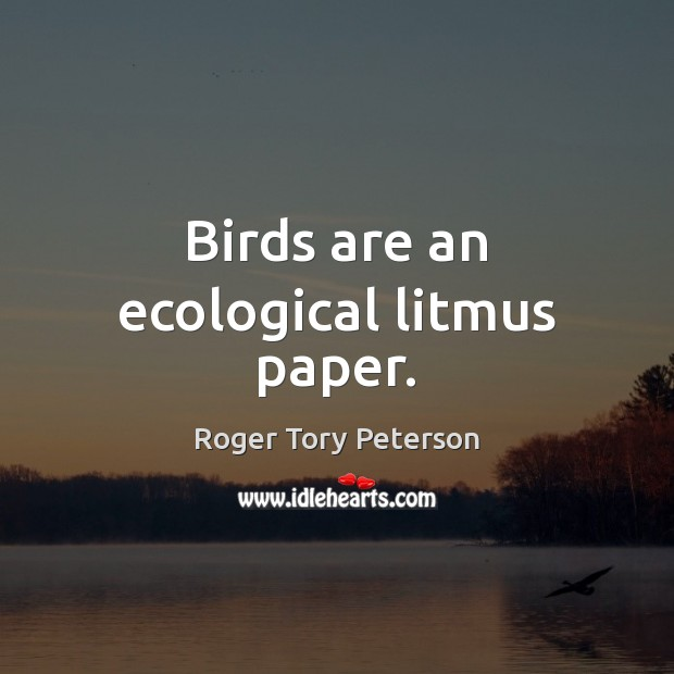 Birds are an ecological litmus paper. Image