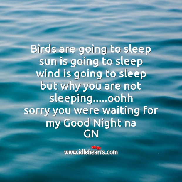 Image, Birds are going to sleep