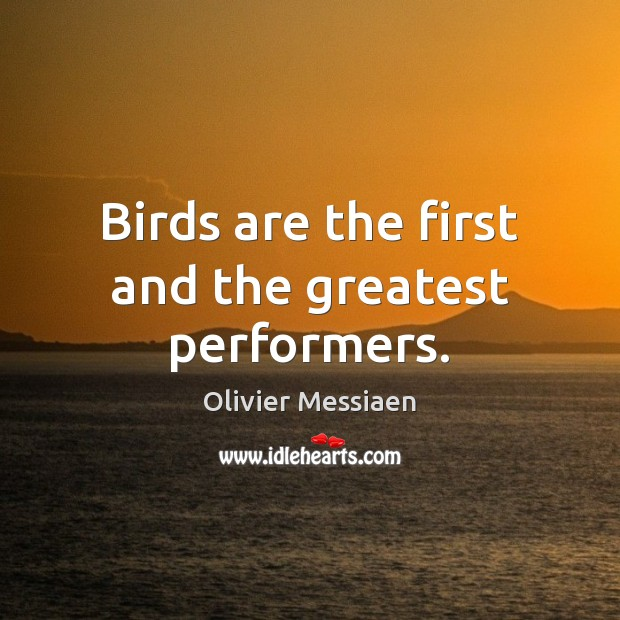 Birds are the first and the greatest performers. Image