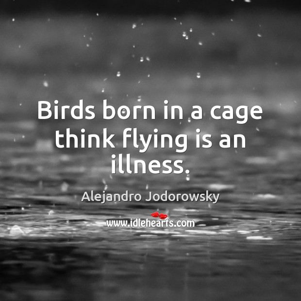 Image, Birds born in a cage think flying is an illness.